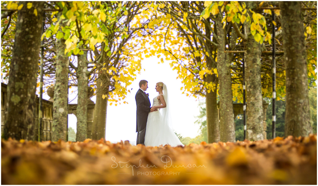Bride and groom amongst trees in Autumn in gardens of Rhinefield House Hotel