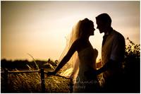 Audleys Wood Wedding Photographer
