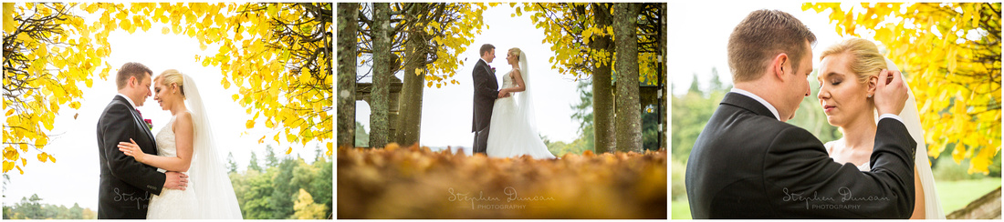 Bride and groom in avenue of trees with autumn colours