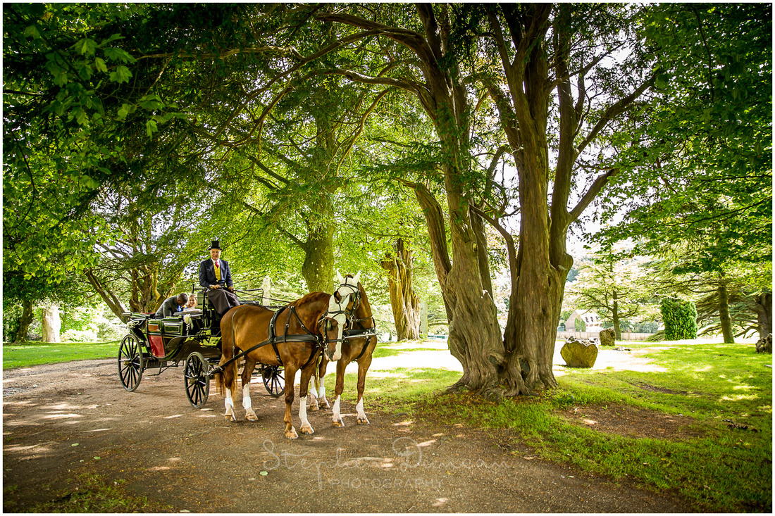 The bride and groom climb into the carriage for a tour of the grounds